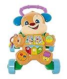 Fisher-Price FRC83 - Lernspaß Hündchens Lauflernwagen, Baby Lauflernhilfe mit mitwachsenden...