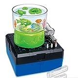 BIUYYY DIY Aquarium-Modell Kinder STEM Physisch Scientific Assembly Spielzeug für Kinder ab 8...
