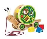 Hape E0349 - Nachzieh-Schnecke, Nachziehspielzeug, inkl. Farb- und Formensortierer, aus Holz, ab 12...