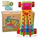 Tabalino® ▪ Xylophon für Kinder ▪ Glockenspiel, Instrument zur musikalischen Früherziehung...